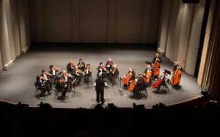 Почему оркестр называется камерным. Камерная музыка: что такое камерный оркестр? История военной музыки