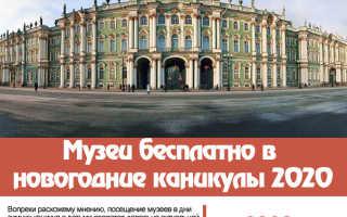 В какой музей сходить в новогодние праздники. В какие музеи можно сходить бесплатно в новогодние каникулы