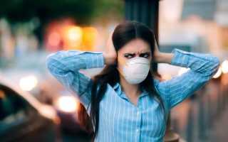 Шумовое загрязнение городов. Шумовое загрязнение и его воздействие на окружающую среду