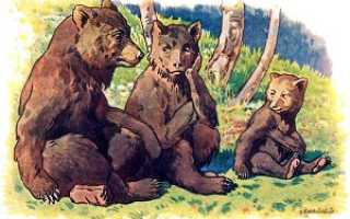 Русская народная сказка. Английская сказка «три медведя», пересказ льва толстого в картинках, читать