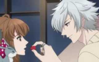 Как всех зовут из аниме конфликт братьев. Brothers Conflict («Конфликт братьев»): персонажи аниме, их биографии, характеристики