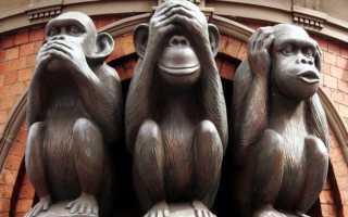 «Три мистические обезьяны» — что означает этот символ мудрости. Три обезьяны — не вижу, не слышу, не скажу — что означает символ