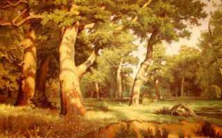 История картины утро сосновом лесу. Реальная история создания картины «Утро в сосновом бору» (из цикла «Вятка — родина слонов»)