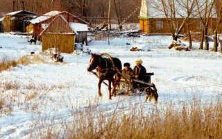 Возрождение русской культуры на селе. Правительство огласило новую программу по возрождению деревни