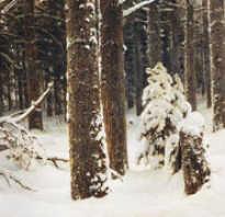 Шишкин зима в лесу описание. Шедевры русских живописцев: описание картины Шишкина «Зима