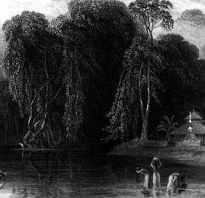 Происхождение слова фольклор и литература. Фольклор – что это такое? Основные характеристики