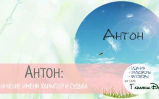 Имя Антон: происхождение и значение. Антон: что значит это имя, и как оно влияет на характер и судьбу человека