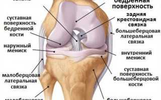 Упражнения для укрепления связок рук. Упражнения и методы укрепления связок коленного сустава