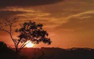 Отношение платона каратаева к войне. Образ платона каратаева в романе война и мир сочинение