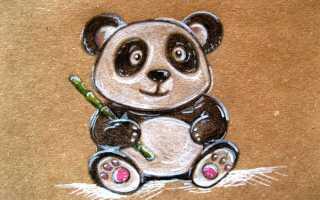 Милые мультяшные мордочки панды. Искусство рисования карандашом: как нарисовать панду