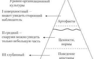 Уровни и элементы организационной культуры. Характеристика поверхностного и подповерхностного уровней организационной культуры