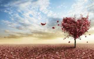 Короткие истории со смыслом о любви. Необычные поучительные истории с глубоким смыслом