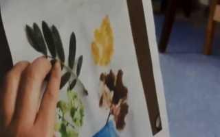 Конспект по рисованию во 2 мл группе. Картотека по рисованию (младшая группа) на тему: рисование младшая группа