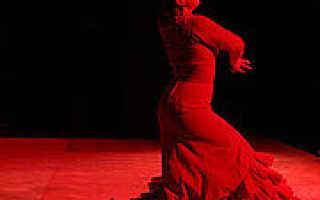 Фламенко — страстный испанский танец под звуки гитары. История танца фламенко Смотреть что такое «Фламенко» в других словарях