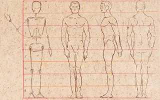 Изображение фигуры человека карандашом. Как научиться рисовать человека – поэтапные инструкции