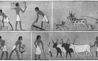 Как жили древние египтяне? Одежда и украшения. Жить в Египте как на курорте: миссия выполнима