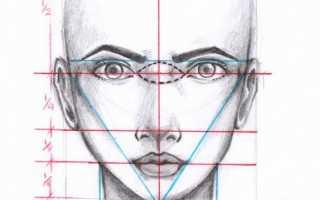 Как нарисовать свой автопортрет карандашом поэтапно. Как нарисовать лицо: основы и пропорции