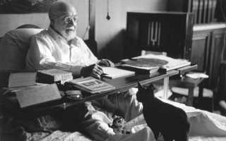Матисс Анри — биография, факты из жизни, фотографии, справочная информация. Анри Матисс: известные картины с названиями, творчество, фото работ французского художника