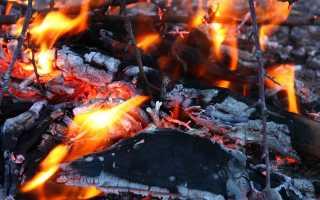 Прах после кремации. Об отношении православия к кремации и возможности воскресения тел