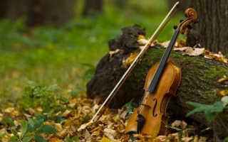 Скрипка духовой инструмент. Как устроена скрипка? Сколько на ней струн? И другие интересные факты о скрипке…