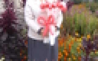 План-конспект занятия по художественной литературе (старшая группа) на тему: литературный досуг по сказкам а.с. пушкина тема: « пушкинский день в детском саду