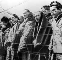 Литовская литература. Литовская писательница: после правды о холокосте я потеряла друзей