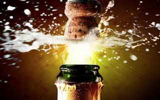 Значение поговорки «Кто не рискует, тот не пьёт шампанское. В бизнесе, кто не рискует тот не пьет шампанское