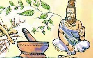 Особенности выращивания индийского лука: описание, уход, применение. Индийский лук в народной медицине
