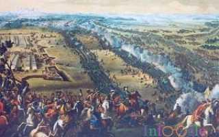 Полтавская битва произошла в ходе. Полтавская битва – кратко: год, причины, значение ход и карта