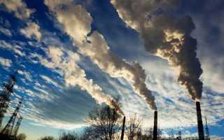 Экологическая проблема и пути ее решения кратко. Экологические проблемы современности и пути их решения