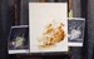 Секреты старых мастеров. Мастер-классы «Живопись маслом» от художника Надежды Ильиной Фламандская техника
